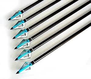 "Buffalo Premium 31"" Fiberglass Target Hunting Arrows"