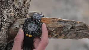Casio PAG240-1CR Pathfinder